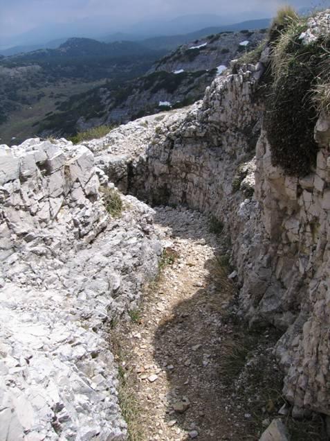 trincea dell'Ortigara la storia della 145